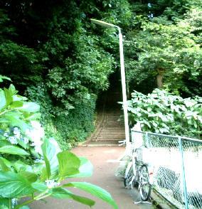 稲荷への入口
