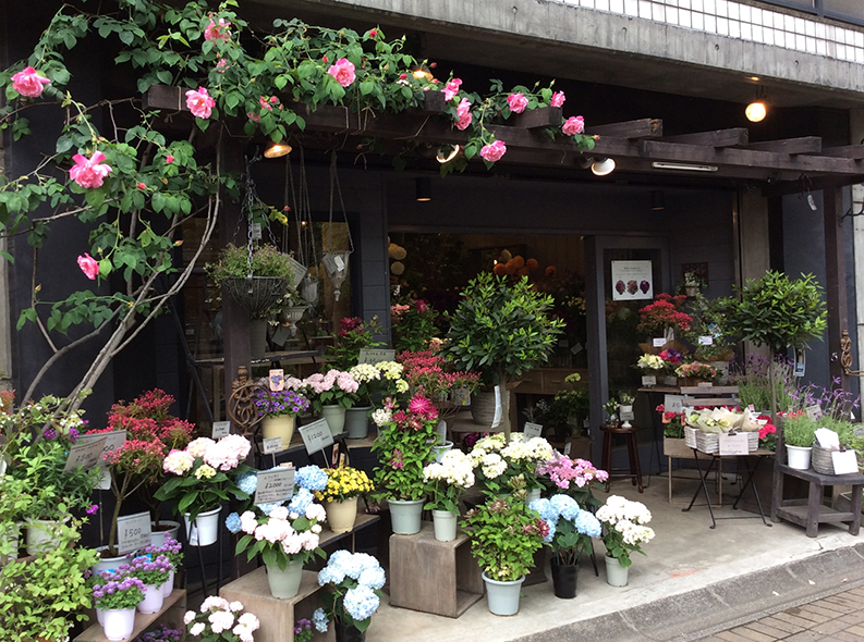 select flower shop filigrane