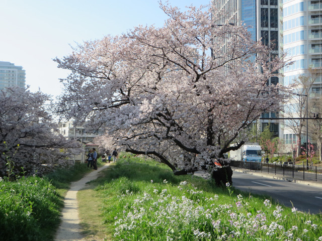 Tamagawaeastgate 09
